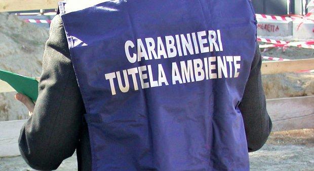 Melito di Napoli, sequestrato dai carabinieri del Noe un opificio operante nel campo della macellazione avicola, una denuncia