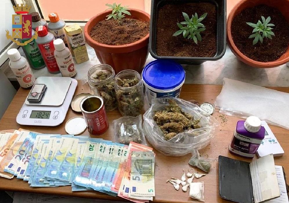Bagnoli (Napoli), coltiva piante di marijuana in casa, 23enne arrestato dalla polizia, sequestrata droga e materiale per il confezionamento