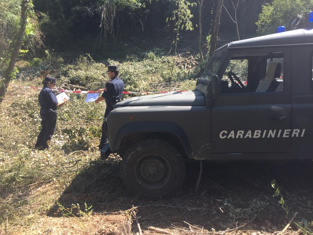Vairano Patenora (Caserta), illecita utilizzazione boschiva, due denunce dei carabinieri forestali durante controlli sul territorio per la prevenzione di incendi